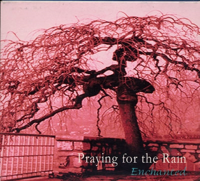Enchanted - Praying for the Rain