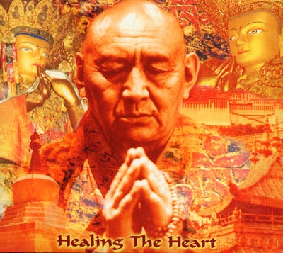 Healing the Heart - Sina Vodjani
