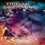 Tribal Dreaming -Music Mosaic Collection
