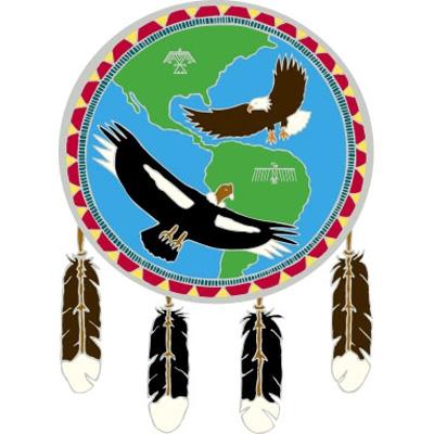 Window Transparency - Native Visions - Condor & Eagle