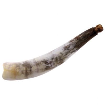 African Cattle Horn