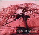 Enchanted - Praying for the Rain