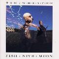 Tim Wheater - Fish Nite Moon