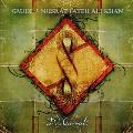 Gaudi + Nusrat Fateh Ali Khan - Dub Qawwali