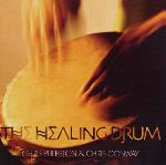 Chris Puleston and Chris Conway - The Healing Drum