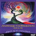 Journey Meditation - Spirit of the Woodland - DVD and CD