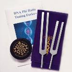 Jonathan Goldman DNA Phi Ratio Forks Kit