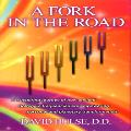 David Hulse - A Fork in the Road