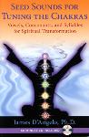 James DAngelo - Seed Sounds for Tuning the Chakras