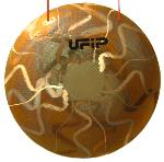 UFIP Bronze Tam Tam B8 Tiger - 60 cm